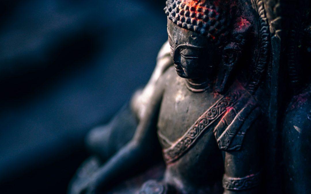 Little Buddha und der Schimpanse