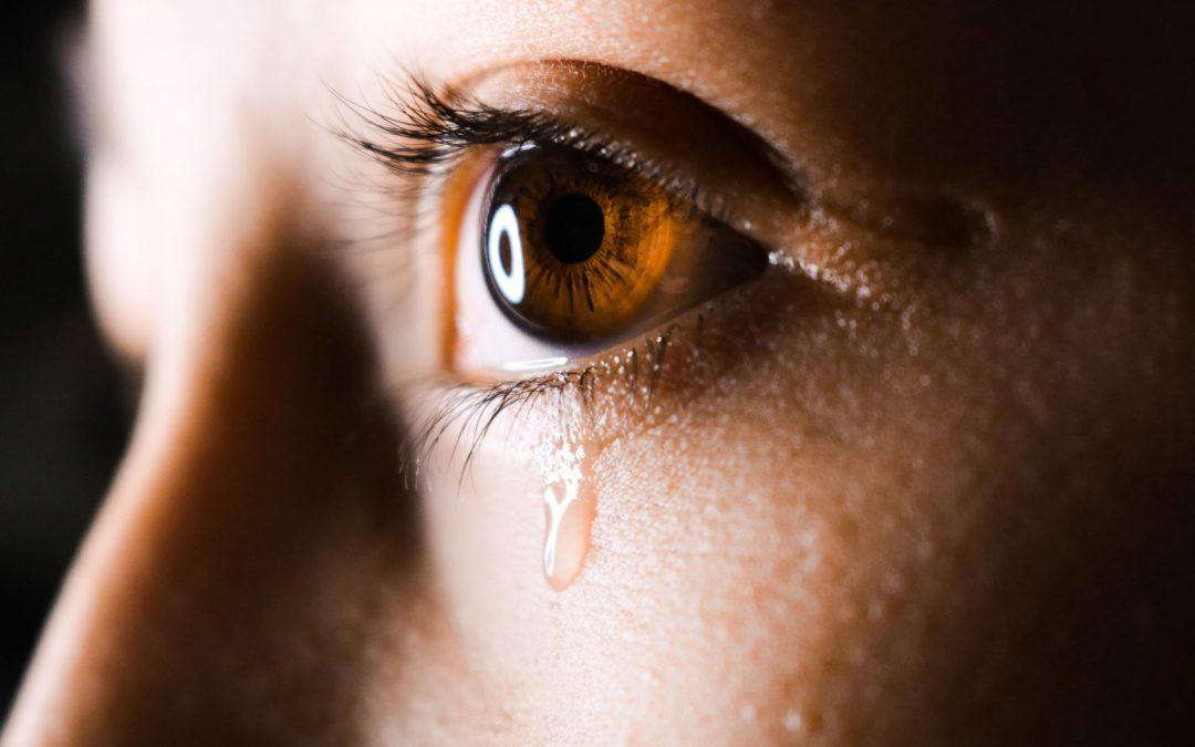 Feldenkrais und Trauma – Haben wir eine Wirkung ? Teil 2