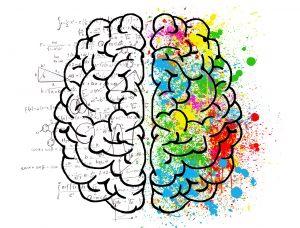 Neuroplastizität, Dr. Ruth Mischnick, Gehirn, Bewegung, Forschung, Feldenkrais, Feldenkrais und Bewegung, kostenlose Feldenkrais Lektion